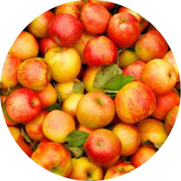 Санкционные яблоки уничтожены в Приморье